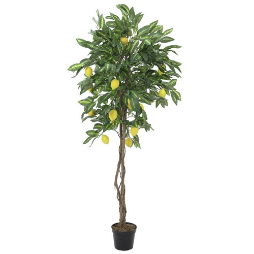 EUROPALMS 82507816 Zitronenbaum, Kunstpflanze, 180cm