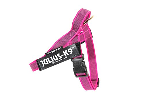 Julius-K9 Color & Gray Arnés de Correa de IDC, Tamaño: Mini, Rosado-Gris
