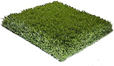 Porch Potty, Synthetic Grass Replacement for Small, Grass Size: 2'x2'