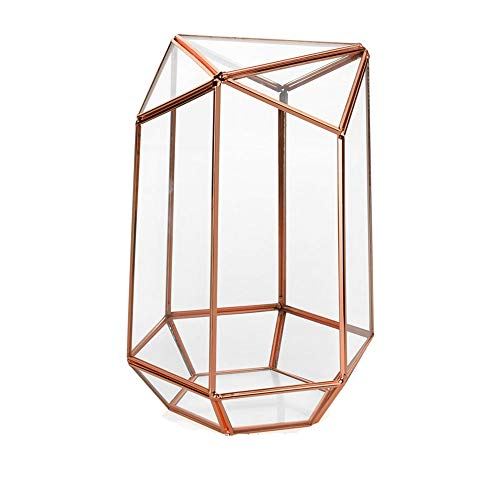 HO-TBO Pflanze Terrarium, Rose Gold Hexagonal Top Unregelmäßige Prism Glass Geometric Terrarium for Sukkulenten, Tillandsien, Kerzenhalter 13.5x12x22.5cm Gewächshäuser Gartenarbeit