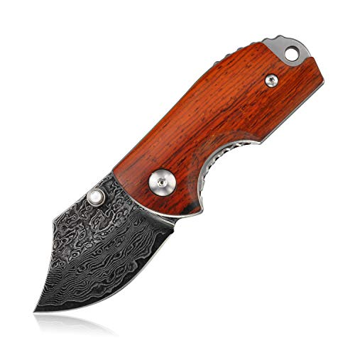 KUBEY Mini Folding Knife, Compact EDC and Gentleman's Pocket Knife with Wooden Handle for Camping Hunting and DIY (DM143-1)