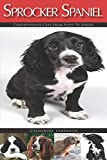 Sprocker Spaniel: Comprehensive Care from Puppy to Senior; Care, Health, Training, Behaviour, Understanding, Grooming, Costs and much more