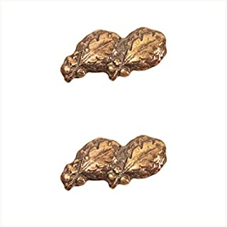 Vanguard RIBBON ATTACHMENTS: TWO OAK LEAF CLUSTERS MOUNTED ON A BAR - BRONZE