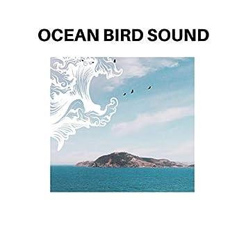 Ocean Bird Sound