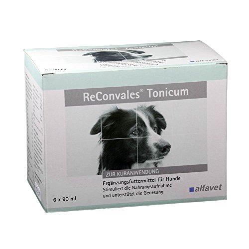 Alfavet ReConvales® Tonicum Hund 1x90ml