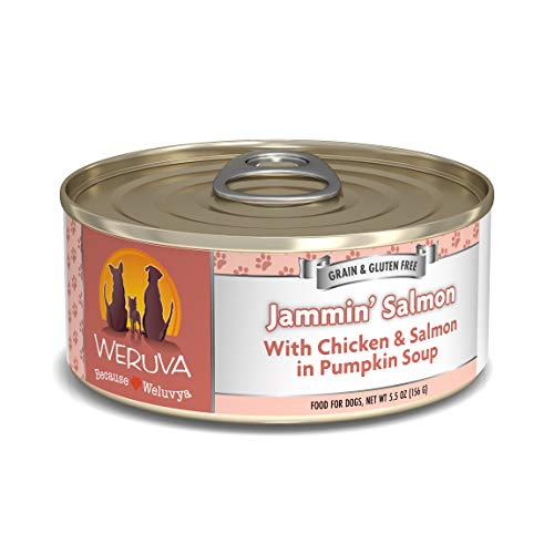 Weruva Classic Dog Food, Jammin' Salmon with Chicken & Salmon in Gravy, 5.5oz Can (Pack of 24)