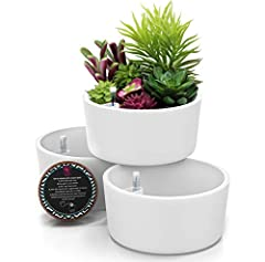 WHILE SOME INDOOR PLANT POTS BREAK and chip easily, making them unsightly and even useless, the Gardenix SELF-WATERING PLANTER POTS with drainage are made from TOUGH, STURDY PLASTIC that holds up to life for EASY MAINTENANCE and MINIMAL MESS. Not onl...