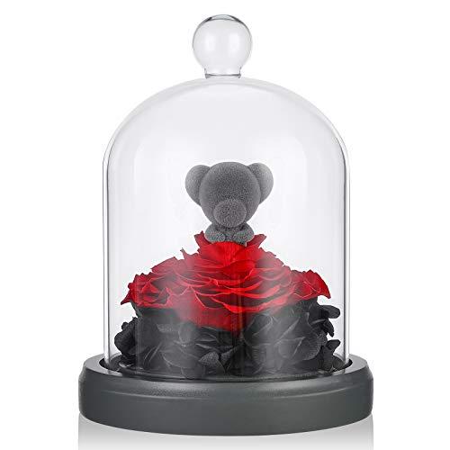 E-MANIS Rose Eternelle avec Ours sous Cloche, La Belle et La Bete, Elégante Dôme en Verre avec Base en Pin Lumières LED, Cadeau pour Fête des Mères Saint Valentin Anniversaire Mariage