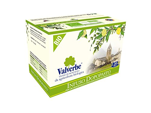 Valverbe Tisane Infuso Dopo Pasto Biologico 20 Filtri - Pacco da 6 - 120 g