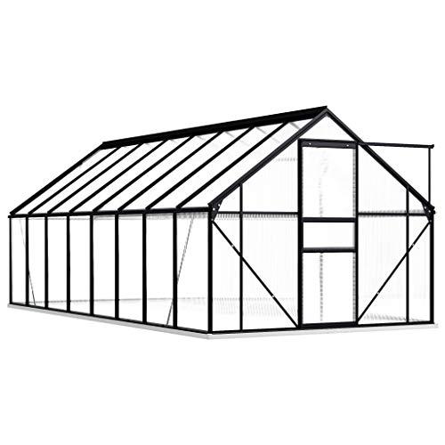 Extaum Gewächshaus Gartengewächshäuser mit Fundamentrahmen Anthrazit Aluminimum 9,31 m³ UV-beständig Mit einem Fundamentrahmen