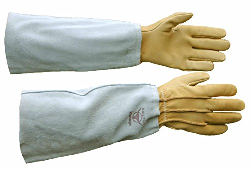 bear wallow glove company - 4