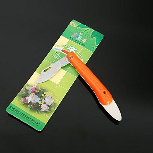 1pièce Greffe couteau professionnel Bois couteau à greffer Outil Engraft Jardin en acier inoxydable Matériau léger Outil à Main Meilleur