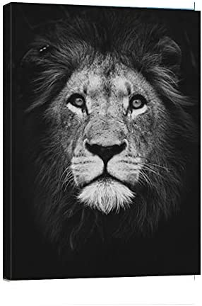 Abstract lion painting _image2