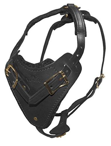 Viper Invader Multifunktions-Hundegeschirr aus Leder für große Hunde, Tracking-Schutz, Polizei (schwarz)