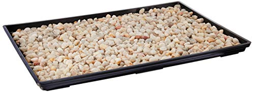 "Brussel's 13"" Humidity Tray with Decorative Rocks"