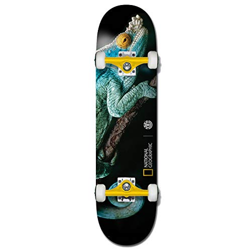Element Komplettboards: Nat Geo Iguana 8.0