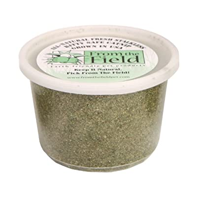 From The Field 3.5-Ounce Catnip Kitty Safe Stalkless Tub