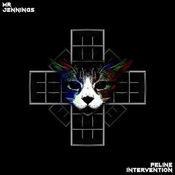 Feline Intervention
