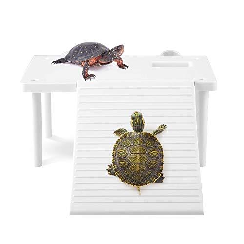 YOUTHINK Schwimmende Plattform für Reptilienschildkröten Mit Kletterleiter Terrarium Aquarium Ornament Turtle Pier Schwimmende Reptilien-Aalplattform für Eidechsenschildkrötenspinne