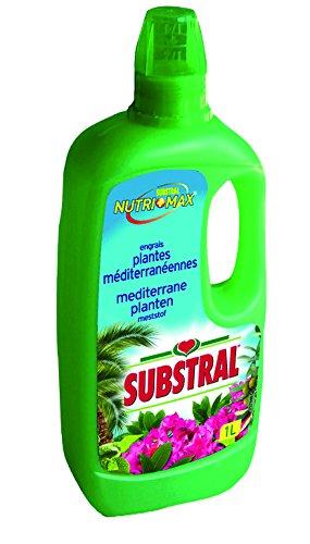 Substral Engrais Agrumes et Plantes Méditerranéennes Liquide 1L