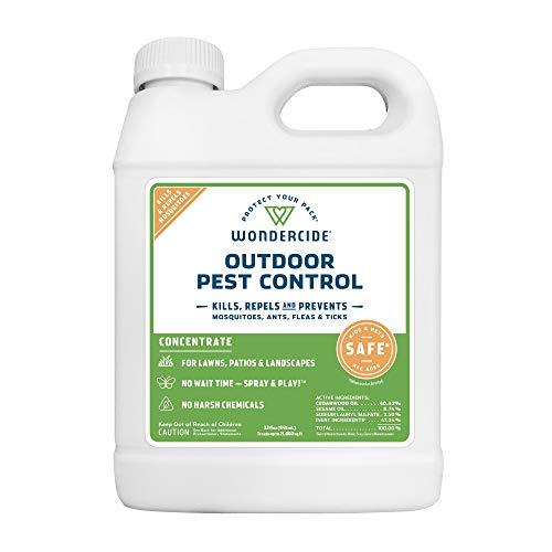 Popular Horse Pest Control
