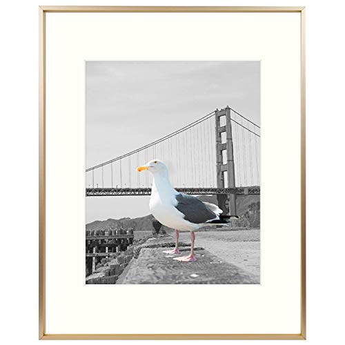 Frametory, Metal Aluminum Frame Collection with Ivory Color Mat & Real Glass (Gold, 1-Pack, 16x20 for 11x14 Photo)
