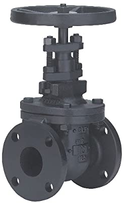 Gate Valve, Size 6 In, Flanged, Cast Iron from Milwaukee Valve