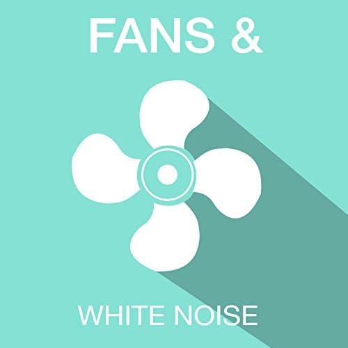 Fans & White Noise
