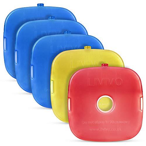 LIVIVO 5 Stück Gel-gefüllte Eiskühler Blöcke, schlank, kompakt, leicht und langlebig, hält kühl Gefrierschrank Platten Einsätze für Kühltasche, Lunchbox, Picknick