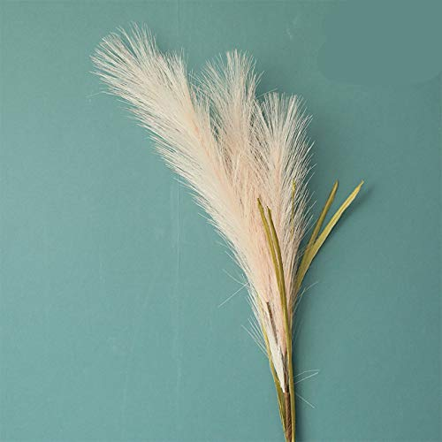 Yueyue947/Reed Grass Simulation Flowers/Decorative Crafts/Fake Flowers And Green Plants Wedding/5 Pcs/Champagne