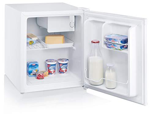 Silva-Homeline KB 1550+ Kühlbox, 45 l, mit Gefrierfach, EEK A+, Getränke, Obst, Gemüse