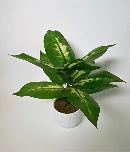 Dieffenbachia Blattpflanze Kunstpflanze Kunst Pflanze Deko Dekopflanze Topfpflanze Zimmerpflanze Grünpflanze künstlich unecht grün weiß Topf 40 cm 54622 getopft F67