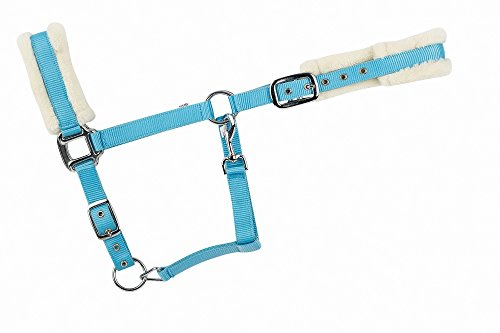 Halfter einfarbig, unterlegt mit Kunstfell, hellblau, Pony
