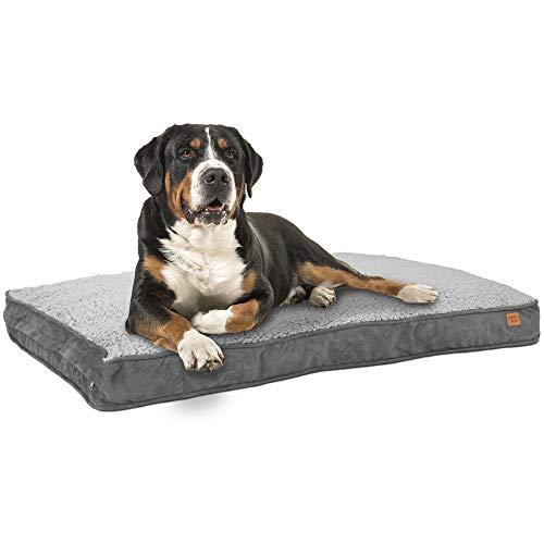 ib style® Happy Dreams Hundebett | Hundematte | mit Reißverschluss |Anti-Rutsch Unterseite | 3 Größen |XL (100x68cm)