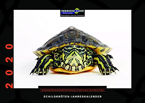 Schildkröten-Jahreskalender 2020: Herausgegeben von Thorsten Geier