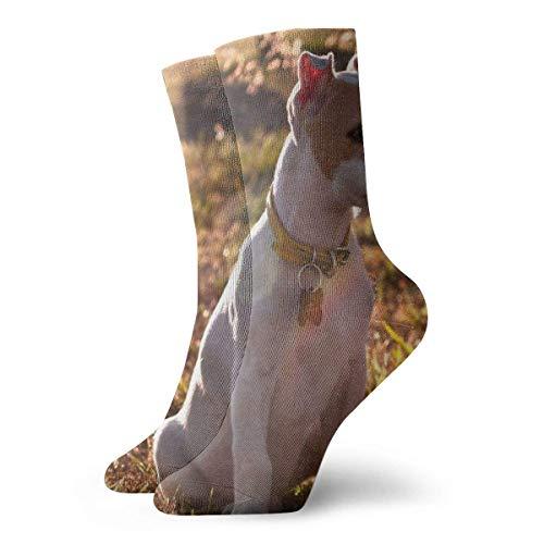 Warm-Breeze Jack Russell Terrier Puppy Dog Compression Socks Unisex Socks Crew Socks Thin Socks Short Ankle For Athletic Moisture Wicking