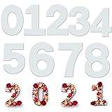 9 pezzi stampo torta numero, taglio della torta stampo cake mold numeri 0 a 9, per crema torta alla frutta,torta nuziale, stampini per dolci (10 pollici)