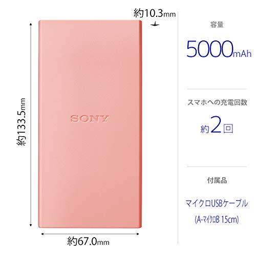 SONY(ソニー)『CP-V5BAP』