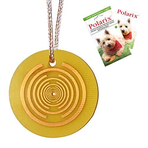 Polarix© für Tiere-Schmerzlinderung | Ergänzungsmedizin für Hunde | Sofortige natürliche Heilung für Hunde Katzen Pferde & Haustiere | Chakra Healing Disc ist kein Hundespielzeug,kann aber | fi 36 mm