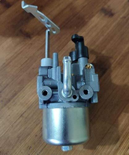 Corolado Spare Parts, Rg2900 Ex21 Carburetor for Robin Subaru Ex13 Sp/Ep/Ex17 Rgn3000 2Kw 2.4Kva 3Kw Generator Carburetor Ay Carburettor