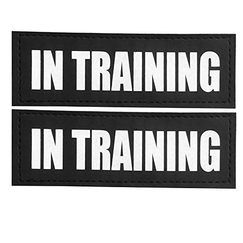 FAYOGOO Reflective in Training Dog Patches with Hook Backing for Service Dog Vests Harnesses