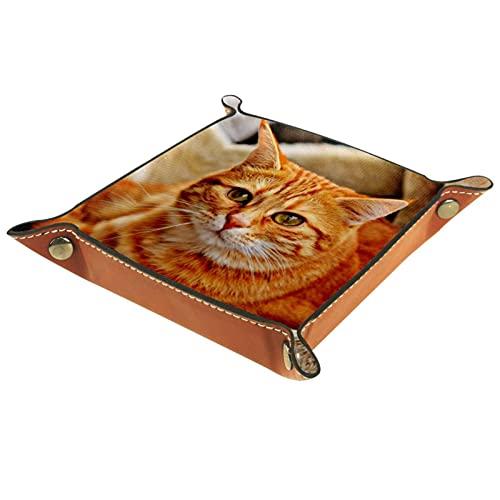 Patrón de gato para hombres Key Wallet monedero viaje joyería cuero bandeja