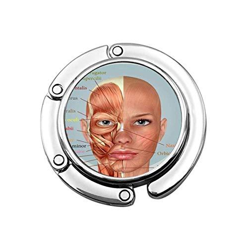Nette Faltbare Geldbörse Kleiderbügel Haken Frau 3D weibliches Gesicht Muskeln Anatomie Anatomisch Anatomisch Biologie Handtasche Haken Tischtasche