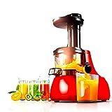NLRHH Máquinas de exprimidor, máquina de Jugo de hogar multifunción de Baja Velocidad, separación Totalmente automática, Fruta pequeña y juicer Vegetal -150W Peng