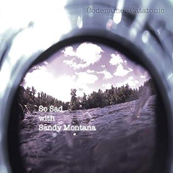 So Sad with Sandy Montana (feat. Sandy Montana)