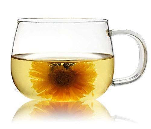 WDragon Juego de 4 tazas de té y café de borosilicato transparente de 300 ml