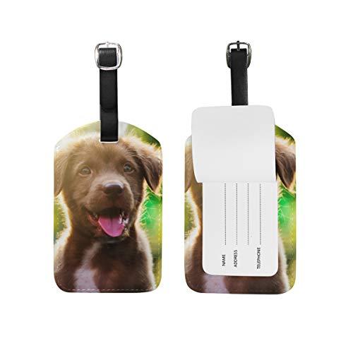 Chic Houses Etiqueta de equipaje de piel para perro animal lindo cachorro maleta equipaje etiqueta de viaje bolsa de identificación etiqueta para maleta 2031579