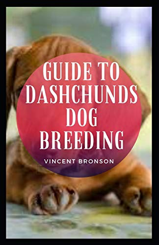Guide to Dachshunds Dog Breeding