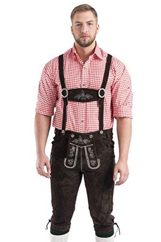 Herren Wildalpen Trachtenlederhose Austria - Kniebundlederhose mit Trägern - Lederhose in Lederhosen Oktoberfest, braun oder Dunkelbraun Gr. 46-64 (64, Dunkelbraun)
