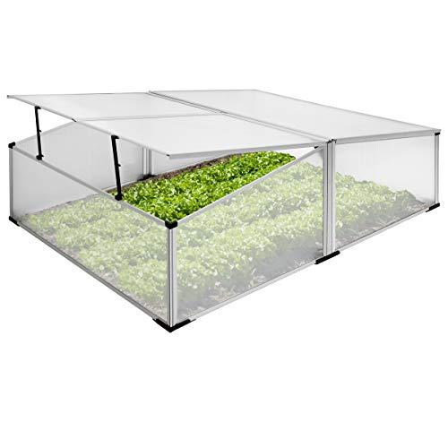 ECD Germany Invernadero para jardín - Aluminio Inoxidable - Marco frío Plateado...